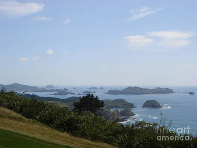 Kauri Cliffs Golf New Zealand Art Print by Jan Daniels