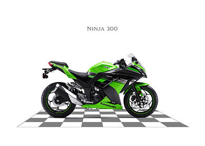 Kawasaki Ninja 300 Art Print by Mark Rogan