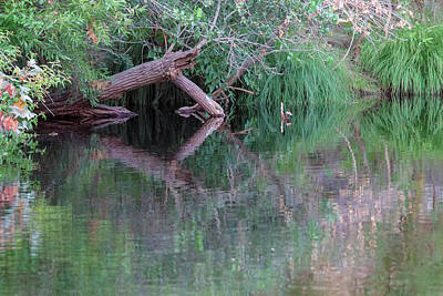 Photograph - Kaweah Reflections 21a by Kent Nancollas