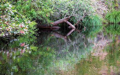 Photograph - Kaweah Reflections 23a by Kent Nancollas