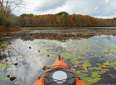 Photograph - Kayak Manorville New York by Bob Savage
