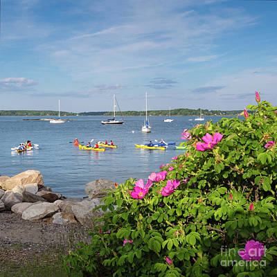 Photograph - Kayakers, Portland, Maine  -35920-nhr by John Bald