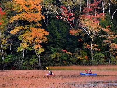 Photograph - Kayaking In Autumn by Nancy Griswold
