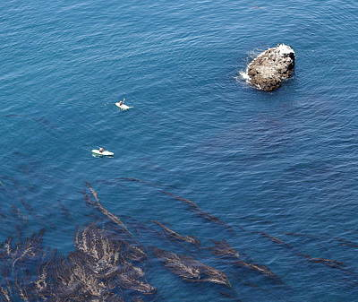 Photograph - Kayaks And Seaweed In Channel Islands by Jeff Kurtz