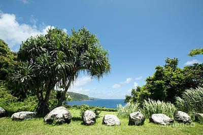 Keanae Mahama Lauhala And The Pacific Ocean Nuaailua Bay Mokuholua Maui Hawaii Art Print by Sharon Mau