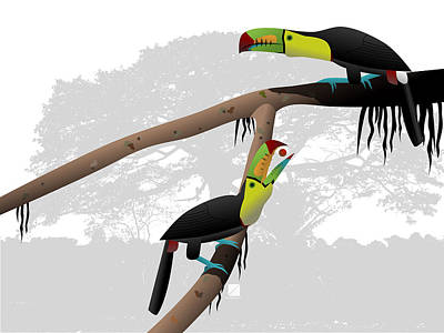 Digital Art - Keel-billed Toucans by Marcus England