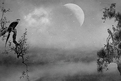 Photograph - Keep An Eye On The Moon by Ericamaxine Price