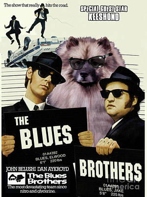 Painting - Keeshond Art Canvas Print - The Blues Brothers by Sandra Sij