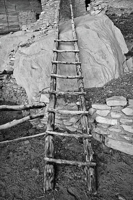 Photograph - Keet Seel Ruins Ladder by Larry Pollock