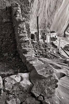 Photograph - Keet Seel Ruins Ruins by Larry Pollock