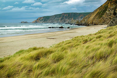 Photograph - Kehoe Beach by Joe Doherty