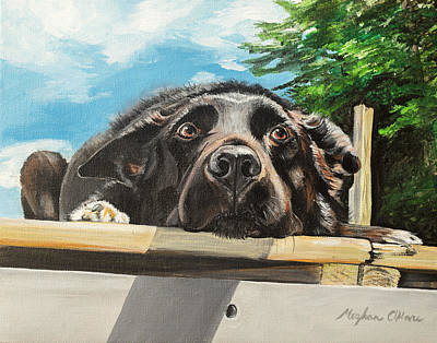 Painting - Keidis  by Meghan OHare