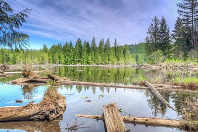 Photograph - Kellogg Lake by Spencer McDonald