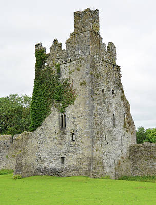 Kells Irish Priory Ivy Covered Medieval Castle Tower House County Kilkenny Ireland Print by Shawn O'Brien