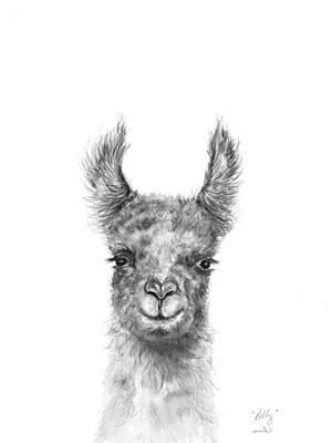 Animals Drawings - Kelly by K Llamas