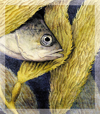 Alga Mixed Media - Kelp Hangout by Kirsten Carlson
