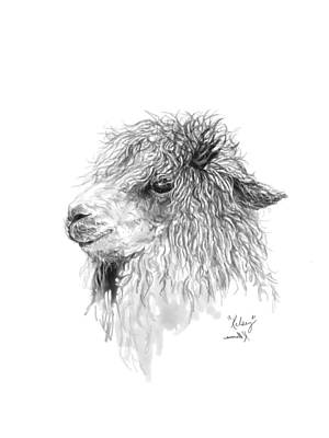 Llama Wall Art - Drawing - Kelsey by K Llamas
