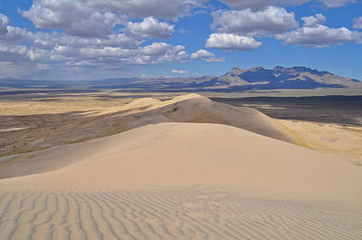 Photograph - Kelso Dunefield by Kyle Hanson