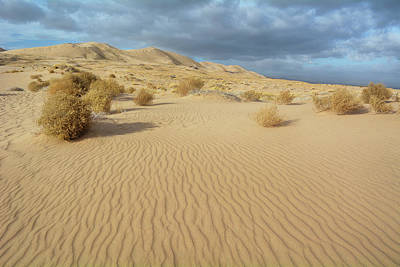 Photograph - Kelso Dunes Mojave Preserve by Kyle Hanson