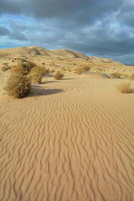 Photograph - Kelso Dunes Mojave Preserve Portrait by Kyle Hanson