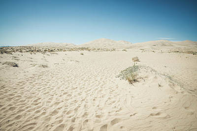 Photograph - Kelso Dunes No.2 by Margaret Pitcher