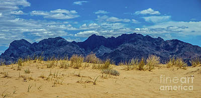 Photograph - Kelso Dunes by Stephen Whalen
