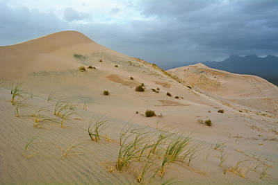Photograph - Kelso Dunes Stormy Afternoon by Kyle Hanson