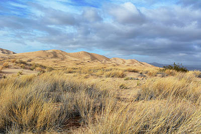 Photograph - Kelso Dunes Wilderness by Kyle Hanson