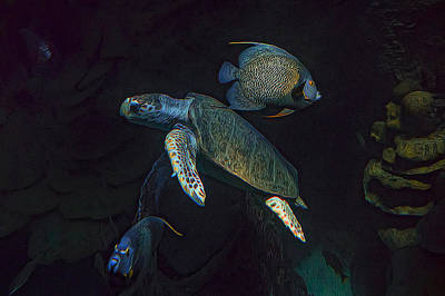 Kemp Photograph - Kemps Sea Turtle  by Janet Fikar