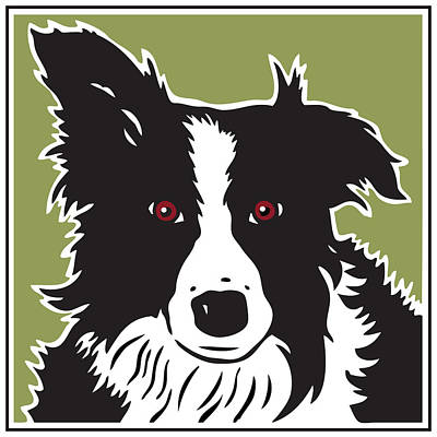 Kenai Border Collie Art Print