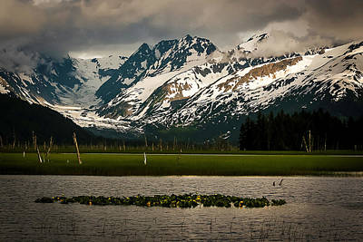Photograph - Kenai Peninsula by Benjamin Dahl