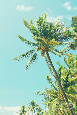 Photograph - Kenolio Beach Hawaiian Coconut Palm Trees Kihei Maui Hawaii by Sharon Mau