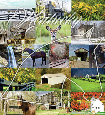 Photograph - Kentucky Collage by Mary Carol Story
