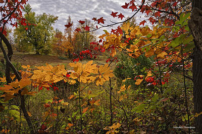 Kentucky Fall Colors Art Print by Wendell Thompson