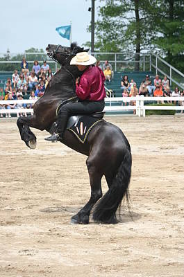 Kentucky Horse Park Digital Art - Kentucky Horse Park - Show Horse by Thia Stover