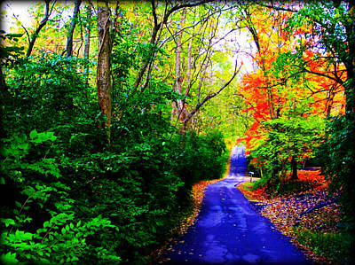 Photograph - Kentucky Lane by Susie Weaver