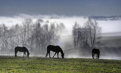 Photograph - Kentucky Morning Mist by Sam Davis Johnson