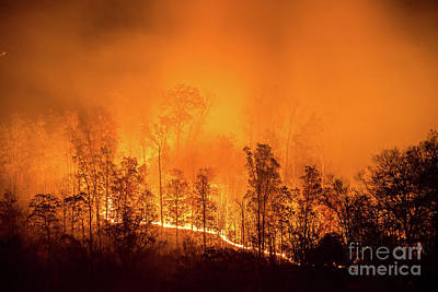 Photograph - Kentucky Wildfire by Anthony Heflin