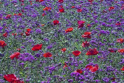Kentucky Wildflower Tapestry Original by Linda Phelps