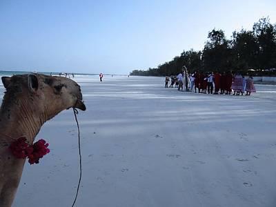 Kenya Wedding On Beach Distance Art Print