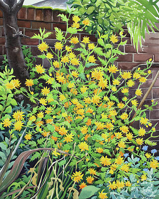 Guinea Wall Art - Painting - Kerria Japonica by Christopher Ryland