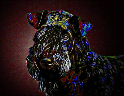Doggy Mixed Media - Kerry Blue Terrier by Alexey Bazhan