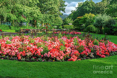 Photograph - Keswick Garden #2 by Elvis Vaughn