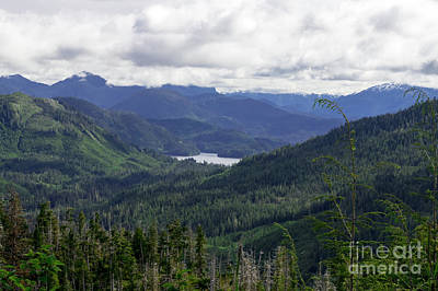 Photograph - Ketchikan Inside Passage by Louise Magno