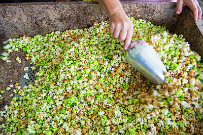 Photograph - Kettle Corn by David Arment