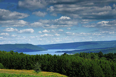 Pastoral Vineyard Photograph - Keuka Landscape V by Steven Ainsworth