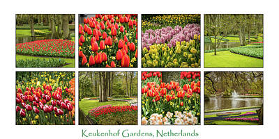 Keukenhof Garden Collage Art Print