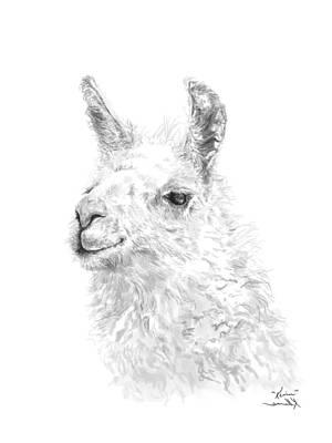 Drawing - Kevin by K Llamas