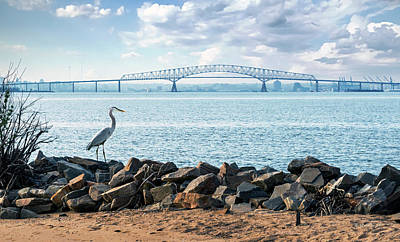 Photograph - Key Bridge From Ft Smallwood Pk by Brian Wallace