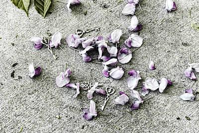 Photograph - Key Fall by Sharon Popek